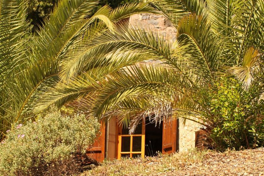 Finca als zweites Zuhause – Ausspannen auf Mallorca